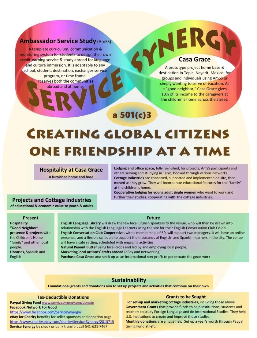 Service Synergy Organizational Chart 1